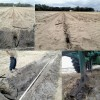 Figure 7. Installation of subsurface drip tape at a depth of 24 in. below the soil surface in a potato field, Hastings, Florida. Upper figures: subsurface drip tape positioning after the installation. Lower left: detail of the manifold (PVC). Lower right: chisel plow adapted for subsurface drip installation.