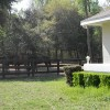 Figure 1. Single-family homes are often located adjacent to horse paddocks or stables in equine farms in Florida. 