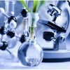 still life: microsocpe, model molecules, and cut plant in flask