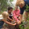 4H children planting a small tree