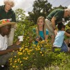 Florida Master Gardeners working with children