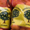 bagged Florida oranges