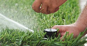 Setting the sprinkler head for an irrigation system