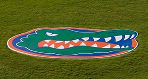 gator head on lawn