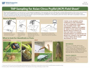 TAP Sampling for Asian Citrus Psyllid (ACP) Field Sheet Page 1