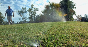 Man standing on lawn while sprinkler soaks turfgrass in foreground
