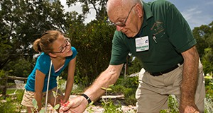Master Gardeners teaching and working with youth in a garden