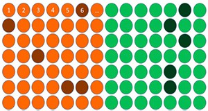 Figure 3. Stratified random sample of 20 ping pong balls.