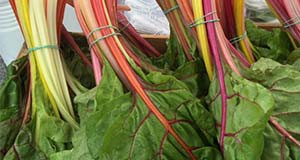 Figure 2. Market display of 'Bright Lights' chard. Credits: Natalie Parkell