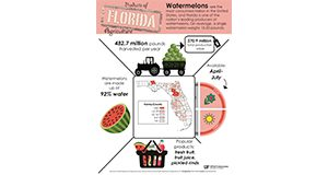Figure 1. Watermelon Fact Sheet to support Ag Awareness Efforts.