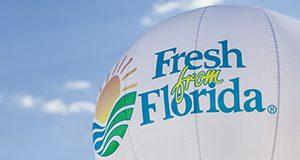 Fresh from Florida hot air balloon against a blue sky