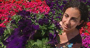 Ornamental horticulture grad student examines petunias