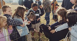 Alachua County kindergarten students touch a 2-month-old calf during the annual dairy-day event held at the University of Florida's Dairy Science Unit in Hague, Friday - Dec. 12, 2003. Children tour the facility, learn about dairy production and even enjoy some ice cream. Students in UF's College of Agricultural and Life Sciences organized the event.