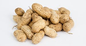 A pile of shelled, Florida Fancy variety peanuts