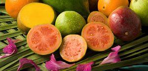 pink guava photo usda