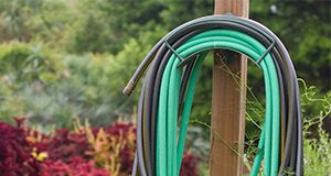 A coiled water hose awaits use in UF's Fifield Garden. Horticulture, irrigation, water, maintenance, spigot, lawn care. UF/IFAS Photo: Tyler Jones