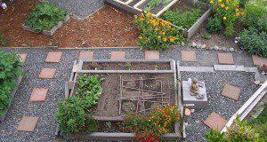 Garden | Urban Farming | Organic