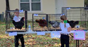 Two children evaluate chickens at a 4-H poultry show.