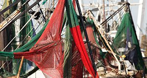 Fishing boat nets and rigging. Photo taken 10-24-16.
