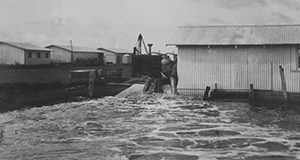 Belle Glade, hurricane of 1928. Photos from the Smather's Archives.