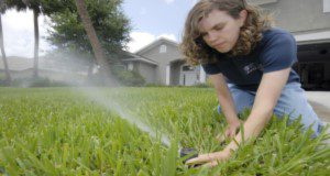 In this photo released from the University of Florida's Institute of Food and Agricultural Sciences, extension agent Janet Bargar checks the water flow and direction of a pop-up irrigation system at a home in Vero Beach – Friday, May 25, 2007. Bargar, a water quality expert, suggests residents check with their county extension office about local watering restrictions. She says the ideal time to water is before sunrise and that residents should check irrigation systems regularly to be sure they're working properly and not watering the sidewalk. Photo Credits: UF/IFAS File Photo