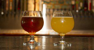 Two glasses of beer at Aaron Kahn brewing at Alligator Brewing in Gainesville, Fl  Photo Credits:  UF/IFAS Photo by Marisol Amador