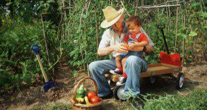 An older man in a brimmed hat sits on a wagon outdoors with a small child on his lap and a basket of vegetables in front of them. Image was taken prior to national guidelines of face coverings and social distancing. Credit: UF/IFAS File Photo